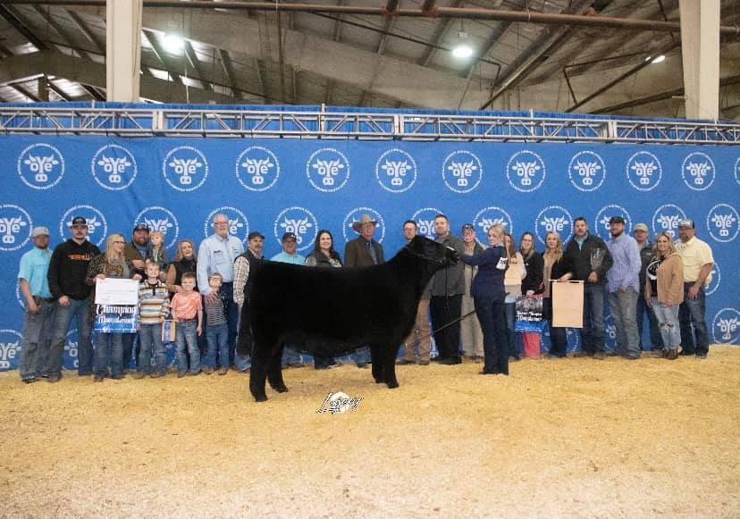 McKenzie Layton Supreme Champion Influence Heifer